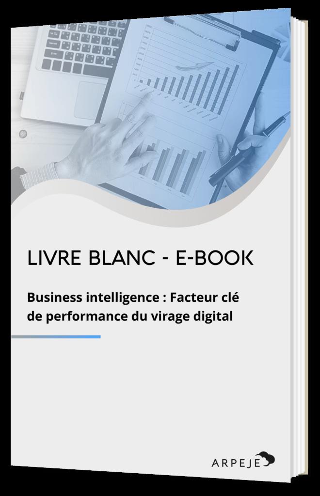 Business Intelligence ArpeJe